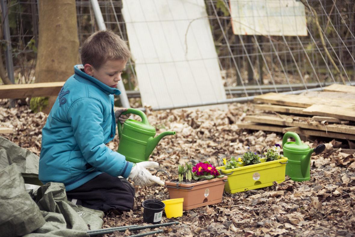 Ein Junge gießt Wasser in frisch bepflanzte Blumentöpfe.