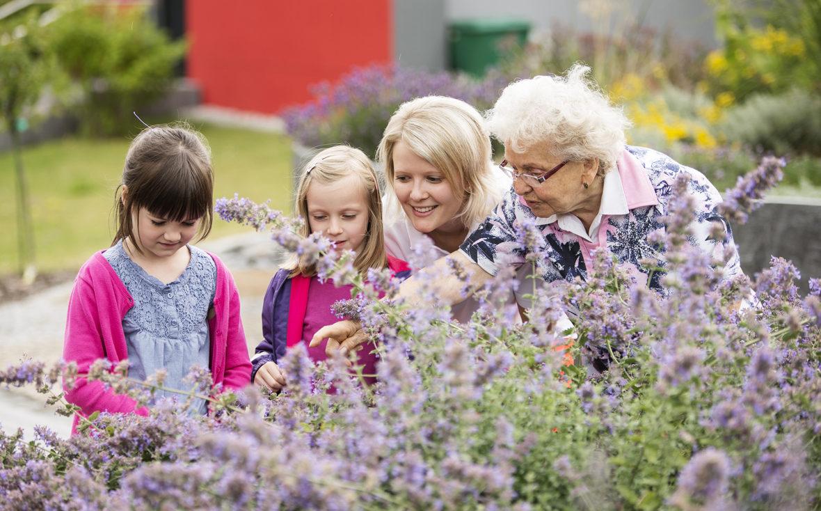 Drei Generationen betrachten Blumen