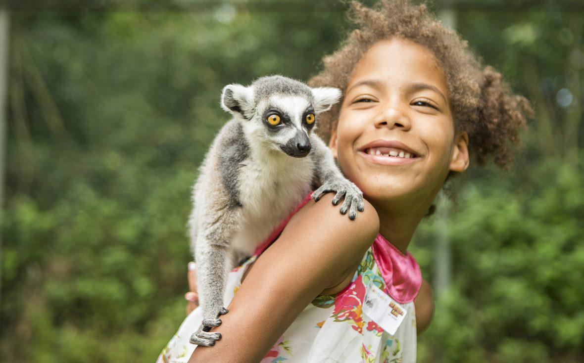 Ein Affe sitzt auf der Schulter eines Mädchens