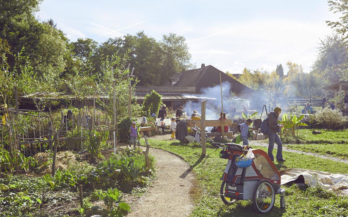 Der Gemeinschaftsgarten von zusammen gärtnern e.V. in Freiburg