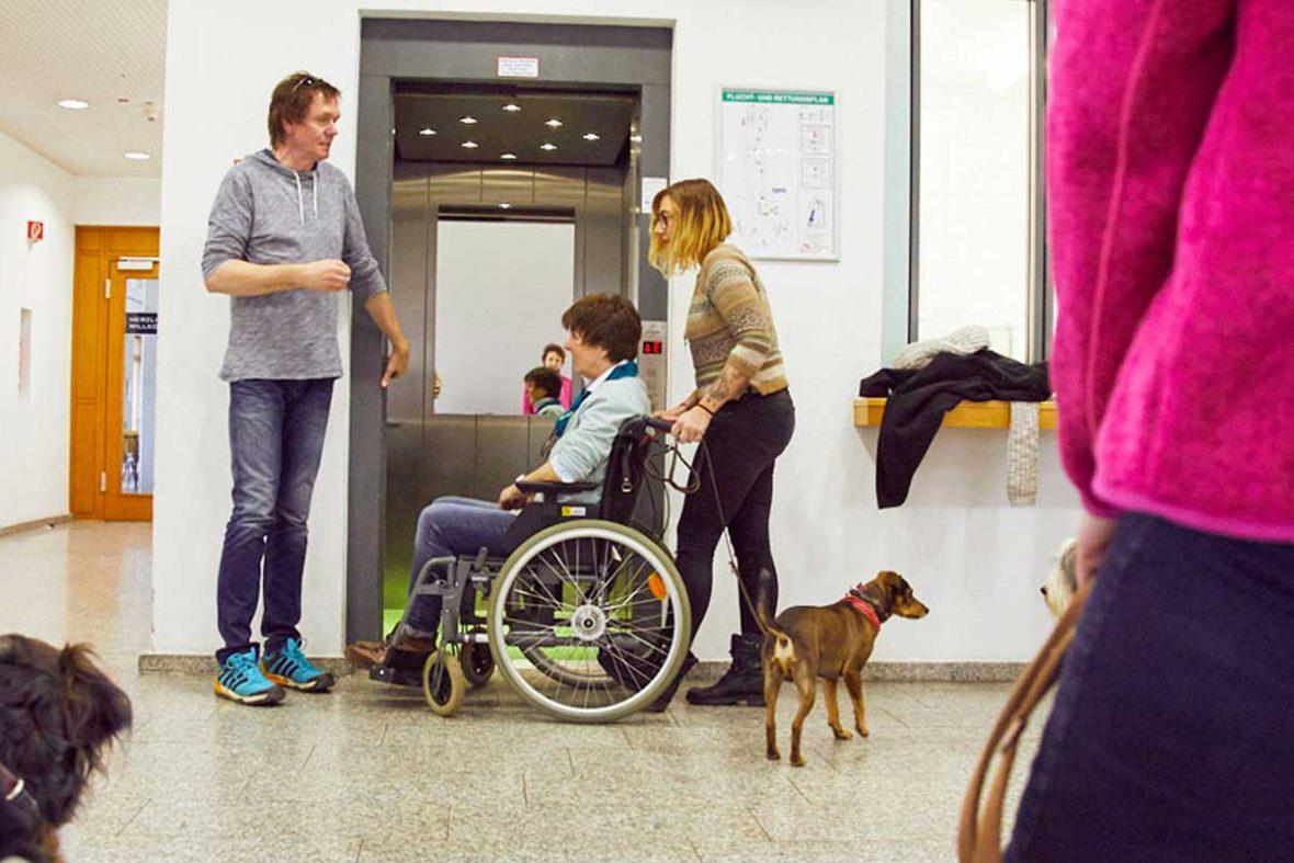 Silvana und ihr Mischlingshund üben die Situation, mit einer Frau im Rollstuhl in den Aufzug zu steigen.