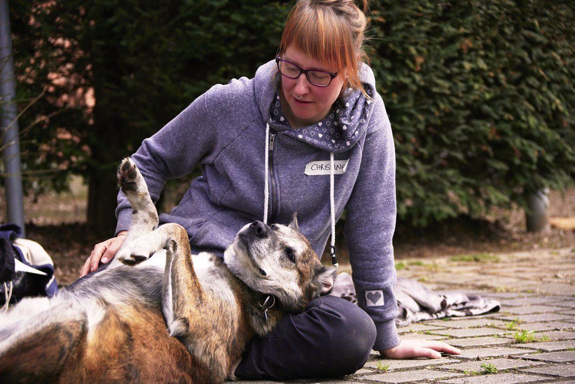 Eine Teilnehmerin des Qualifikationskurses schmust mit ihrem Hund, der sich auf den Rücken gerollt hat.