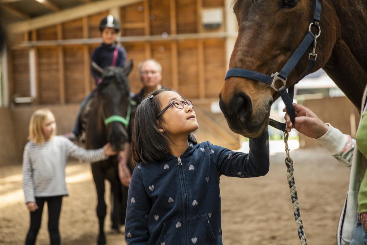 Mädchen mit Brille schaut zu braunem Pferd. Im Hintergrund steht ein Mann neben einem Pferd, auf dem ein Kind reitet.