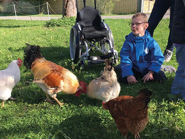 Ein Junge sitzt neben ein paar Hühnern, neben ihm steht ein leerer Rollstuhl